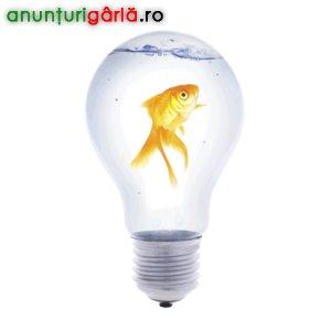 Imagine anunţ Curs Intensiv de Dezvoltare a capacitatilor creative, 6-7, 13-14 Sibiu