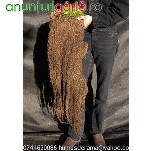 Imagine anunţ Vand humus de rama pur marca BIOHUMUS