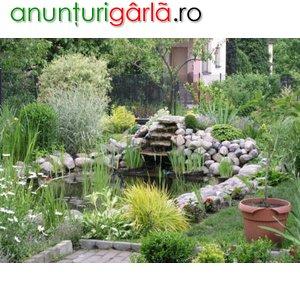 Imagine anunţ Piscine ecologice