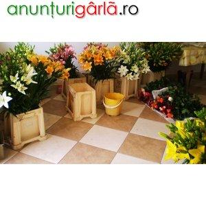 Imagine anunţ Vand flori en gros