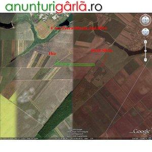 Imagine anunţ 10.000 mp PETRACHIOAIA, ILFOV