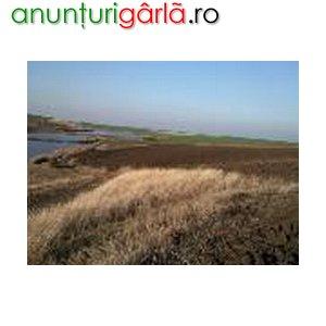 Imagine anunţ SARULESTI - AUTOSTRADA SOARELUI