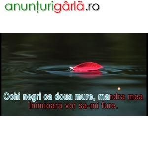 Imagine anunţ DVD original muzica karaoke romaneasca