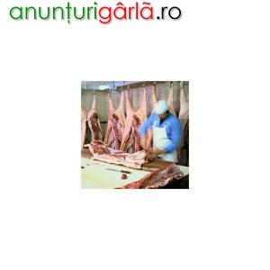 Imagine anunţ Angajam urgent Macelari, Transatori si Desozatori