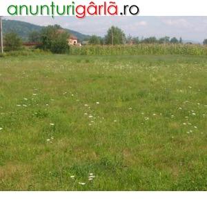 Imagine anunţ Terenuri intravilane in Mioveni, Arges
