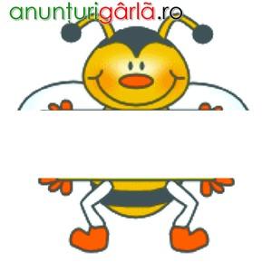 Imagine anunţ execut crotalii stupina si banner identificare stupina