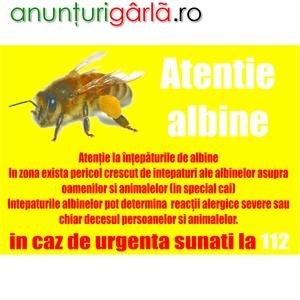 Imagine anunţ CROTALII ALBINE SI BANNER IDENTIFICARE STUPINA