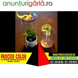 Imagine anunţ Cutie De Plastic Ghiveci Process Color