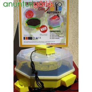Imagine anunţ incubator oua Cleo 5 automat 41 oua
