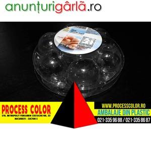 Imagine anunţ Cofraje oua 7 compartimente Process Color
