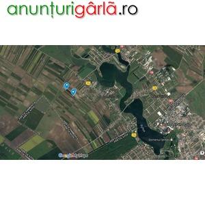 Imagine anunţ Vand Teren Samurcasi (Buftea - Crevedia)