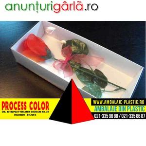 Imagine anunţ Cutii pentru trandafiri artificiali Process Color