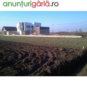 Imagine anunţ comuna berceni teren lotizare