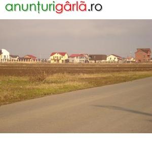 Imagine anunţ Loturi Comuna Berceni 280 Mp
