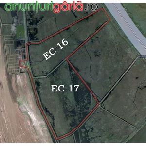 Imagine anunţ Vand teren concesionat 736Ha, Delta Dunarii
