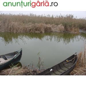 Imagine anunţ teren Murighiol