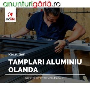 Imagine anunţ TAMPLARI OLANDA 2200 EUR+CAZARE GRATUITA
