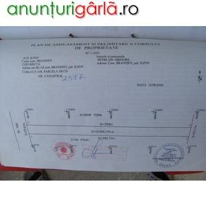 Imagine anunţ Teren Extravilan in Localitatea Branesti sat Islaz Judet Ilfov