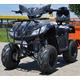 Imagine anunţ ATV T-REX BMW
